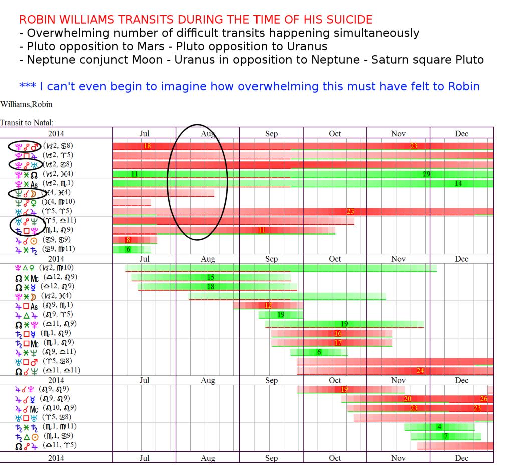 WilliamsRobin-2014-Transits-Suicide
